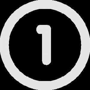 1 icon gray